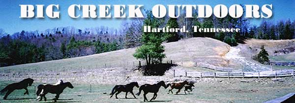 Big Creek Outdoors Hartford, Tennessee